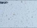 tempest FH114 Horizon_КАМЕНЬ ИСКУССТВЕННЫЙ_ПОД ПРОИЗВОДСТВО МЕБЕЛИ_НА ЗАКАЗ_В_МИНСКЕ