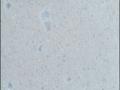 PL848 Pebble Limestone_ИСКУССТВЕННЫЙ КАМЕНЬ_ПОД ПРОИЗВОДСТВО МЕБЕЛИ_ПОД ЗАКАЗ_В_МИНСКЕ