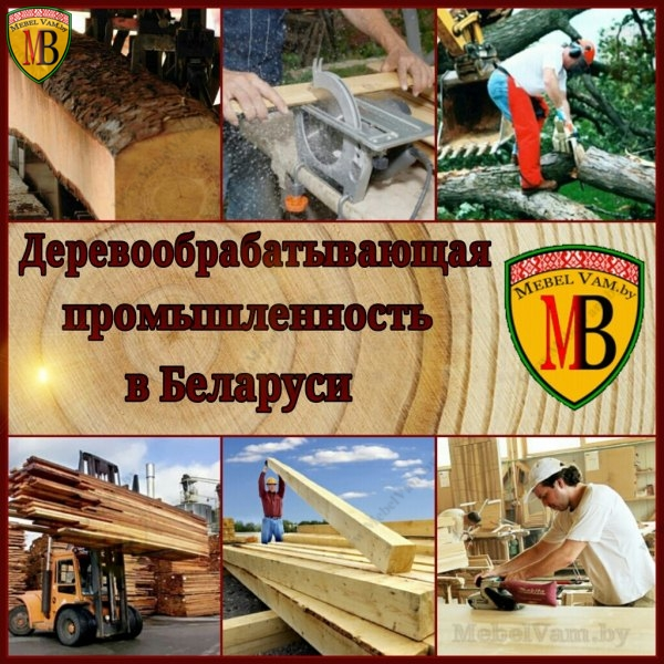 деревообрабатывающая промышленность в беларуси